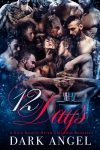 Featured Book: 12 Days by Dark Angel