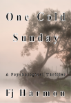 One Cold Sunday by Fj Harmon